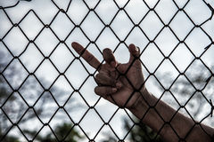 Hand with mesh cage, Hands with steel mesh fence Stock Photos