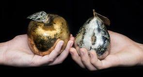 Hand met appel en perenmetaal Royalty-vrije Stock Afbeelding