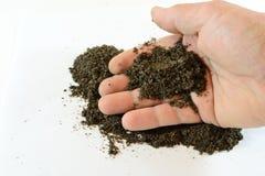 Hand met grond stock foto