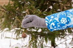 Hand met Kerstmisdecoratie Kleding omhoog een Kerstboom Stock Foto