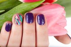 Hand met mooie manicure die een roze tulpenbloem houden Stock Foto's