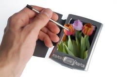 Hand met naald en laptop Royalty-vrije Stock Afbeeldingen