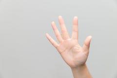 Hand met open palm Stock Afbeelding