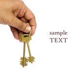Hand met sleutels stock afbeeldingen