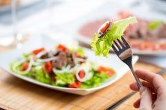 Hand met vork en plantaardige salade met rundvlees Royalty-vrije Stock Afbeelding