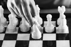 Hand met witte ridder op schaakbord Stock Fotografie
