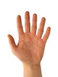 Hand met zes vingers royalty-vrije stock afbeeldingen