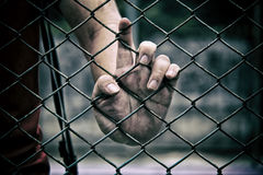 Hand with metal fence,no freedom, Royalty Free Stock Image