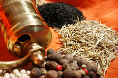 Hand mill and spices Stock Image