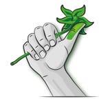 Hand mit einem grünen Daumen Lizenzfreies Stockbild