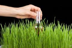 Hand mit einem Reagenzglas und einem Gras. Düngemittel Lizenzfreie Stockbilder