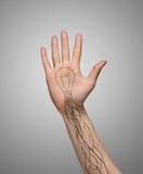 Hand mit einer offenen Palme, Tätowierungsbirnen und Adern auf grauem Hintergrund Ökologisch, sozial, Technologiekonzept stockfoto