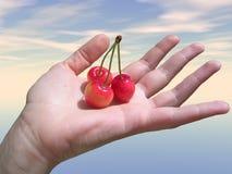 Hand mit Frucht Lizenzfreies Stockfoto