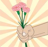Hand mit Gartennelke stock abbildung