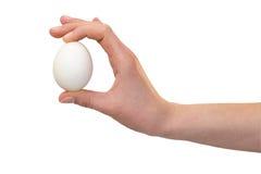 Hand mit Hühnereien Lizenzfreie Stockfotos
