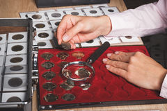 Hand mit Münze, Kasten mit sammelbaren Münzen in den Zellen und eine Seite mit Münzen in den Taschen Stockfoto