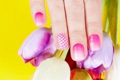 Hand mit manikürten Nägeln und Tulpenblumen Stockbild