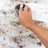Hand mit nassem Schwamm säubert sehr schmutzige Oberfläche Lizenzfreie Stockfotos