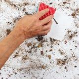 Hand mit rotem Schwamm säubert schmutzige Oberfläche Stockfotos