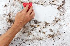 Hand mit rotem Schwamm säubert sehr schmutzige Oberfläche Lizenzfreie Stockfotos