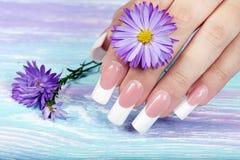Hand mit schönen langen künstlichen Franzosen manikürte Nägel lizenzfreies stockbild