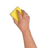 Hand mit Schwamm Lizenzfreie Stockbilder