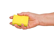 Hand mit Schwamm Lizenzfreies Stockfoto