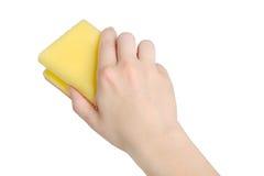 Hand mit Schwamm Stockbilder