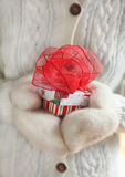 Hand in mittens holding a christmas box. Hand in mittens holding a christmas gift with decorative red ribbon bow Royalty Free Stock Photos