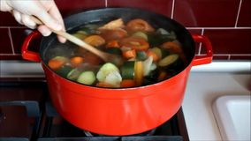 Hand mixing a Red pot with boiling vegetable soup stock video