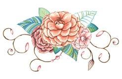 Hand målad blom- prydnad för vattenfärg av rosor Arkivbilder