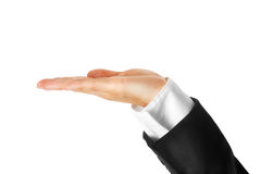 Hand of modern business woman Royalty Free Stock Photography