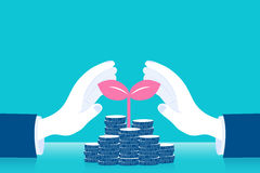 Hand with money tree. Business with hand protect money tree concept on the blue background Stock Photos