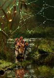 Hand in the Moors. Halloween nightmare, a bleeding hand coming out of the swamps Royalty Free Stock Photos