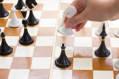 Hand moving chess knight Royalty Free Stock Images