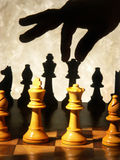 Hand moving chess piece Stock Image
