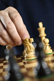Hand moving knight on chess board Stock Photos