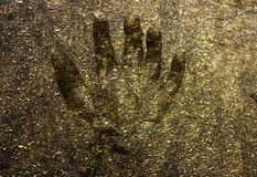Hand in mud background Royalty Free Stock Image