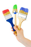 Hand with multicolored brushes Royalty Free Stock Images