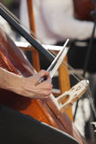 Hand musician playing contrabass Royalty Free Stock Photography