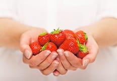 Hand mycket av jordgubbar Royaltyfria Foton
