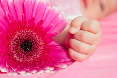 Hand of the newborn child Royalty Free Stock Image
