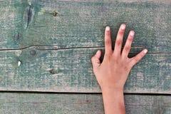 Hand, nummer och trä Royaltyfria Bilder