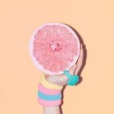 Hand och grapefrukt, vaniljtillbehör Royaltyfria Foton