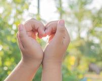 Hand och hjärta arkivfoto