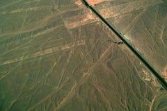 Hand och träd, Nazca linjer, Peru Fotografering för Bildbyråer