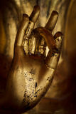 Hand Of Buddha. Stock Photos