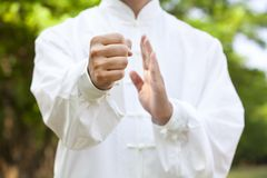Hand Of Kung Fu Stock Images