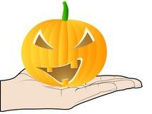 Hand offer an pumpkin Royalty Free Stock Photo