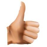 Hand. Ok icon, isolated on white background, vector illustration Stock Image